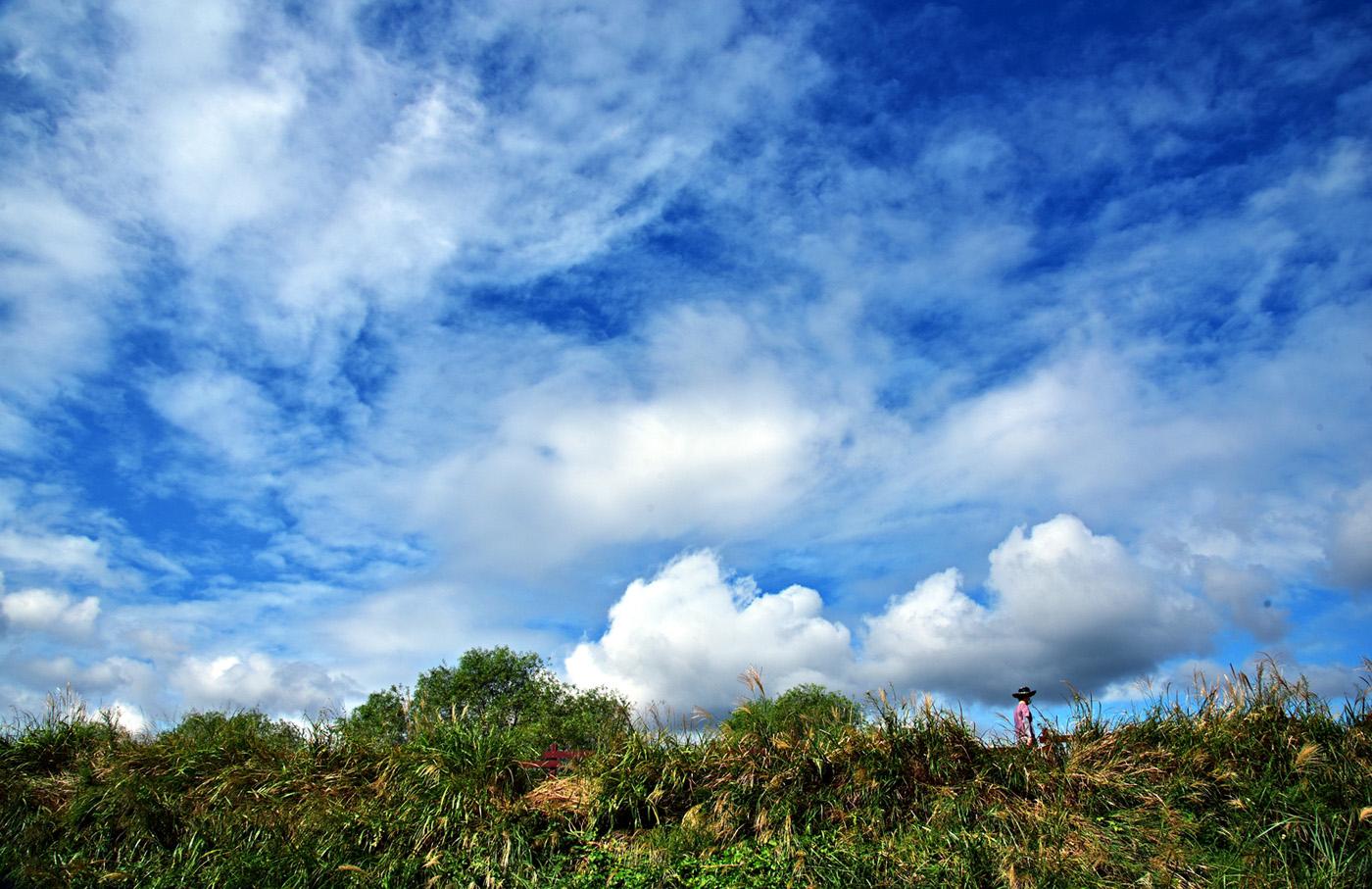구름 나그네.JPG